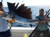 enjoy_a_key_west_fishing_charter